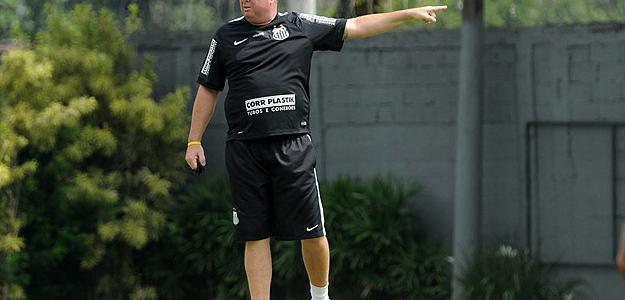 Marcelo Fernandes foi efetivado pelo Santos